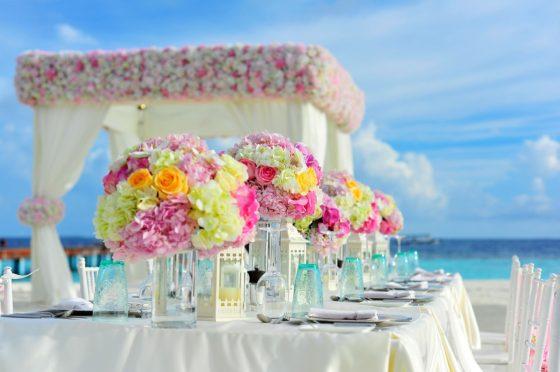 honeymoon deals east bedarra island