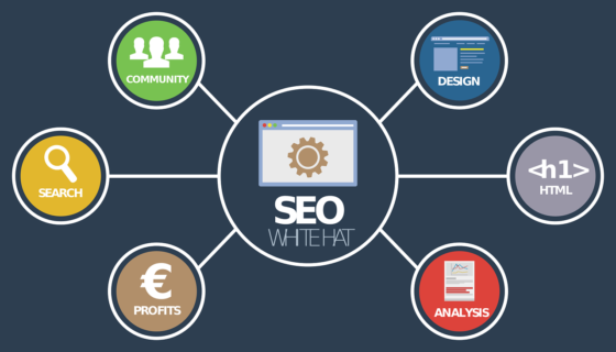 Digital Marketing SEO