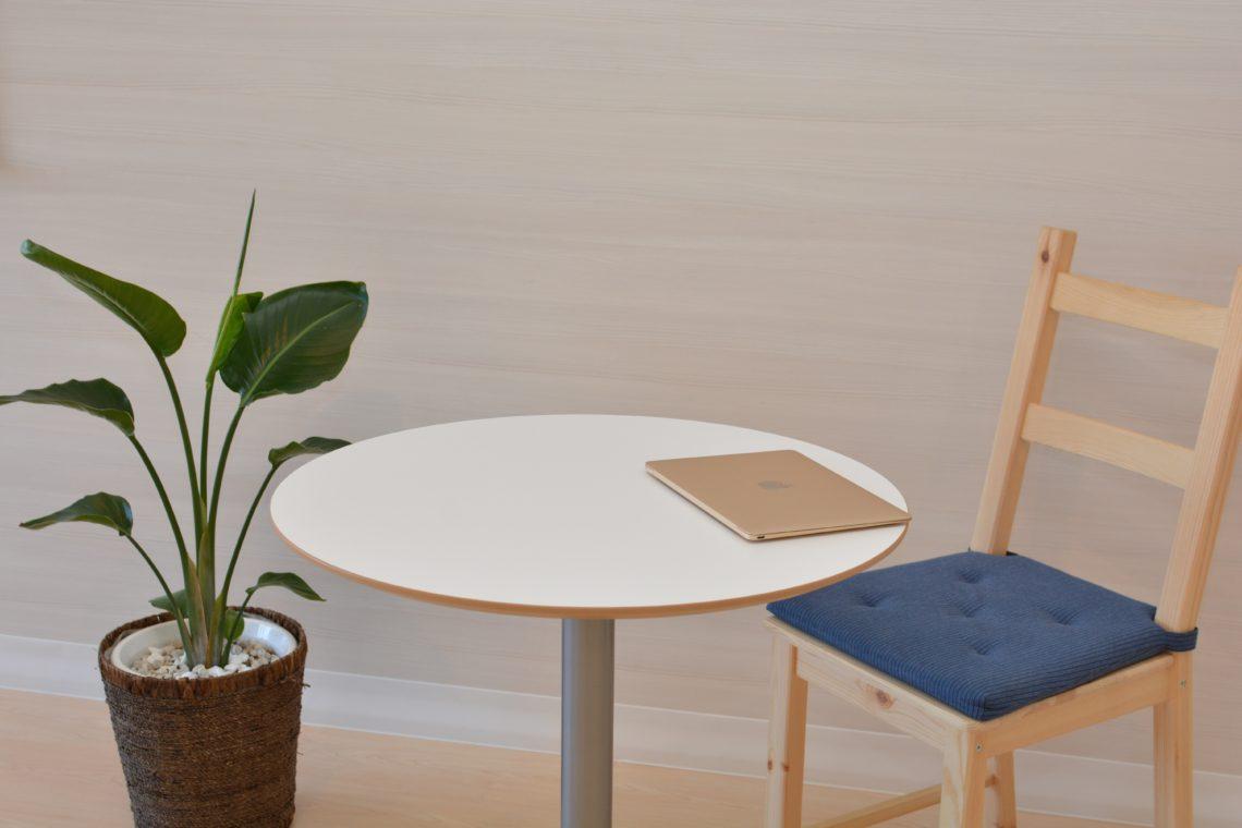 Indoor Plants Hire