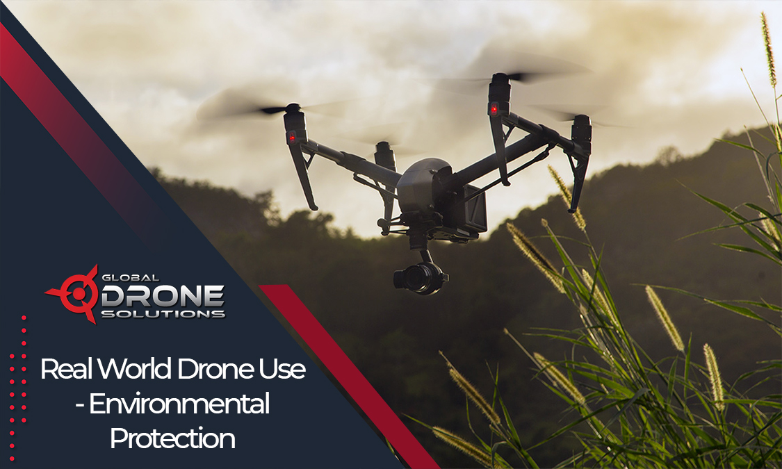 training drone licence