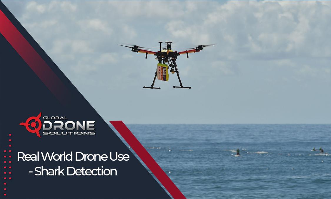 training Drone pilot