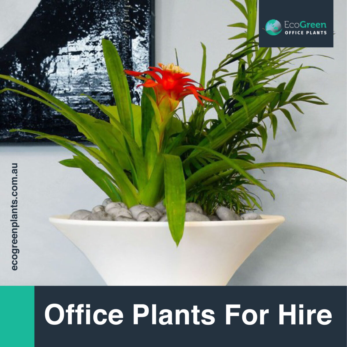 Melbourne plant hire in