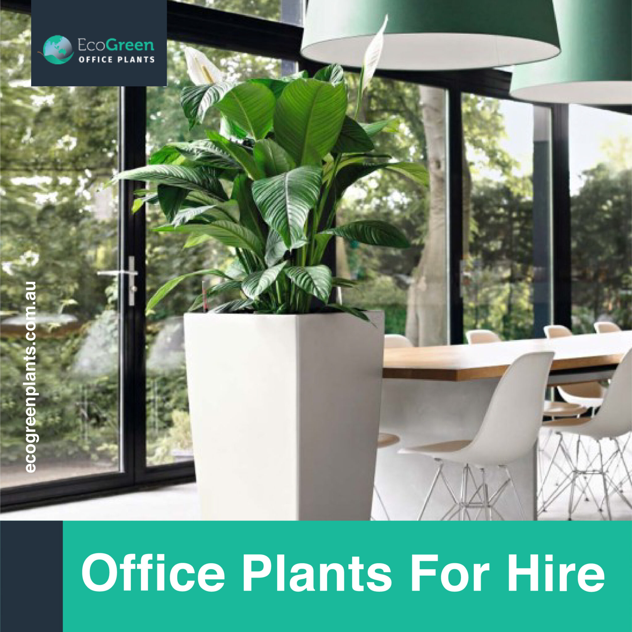 hire in Melbourne plants