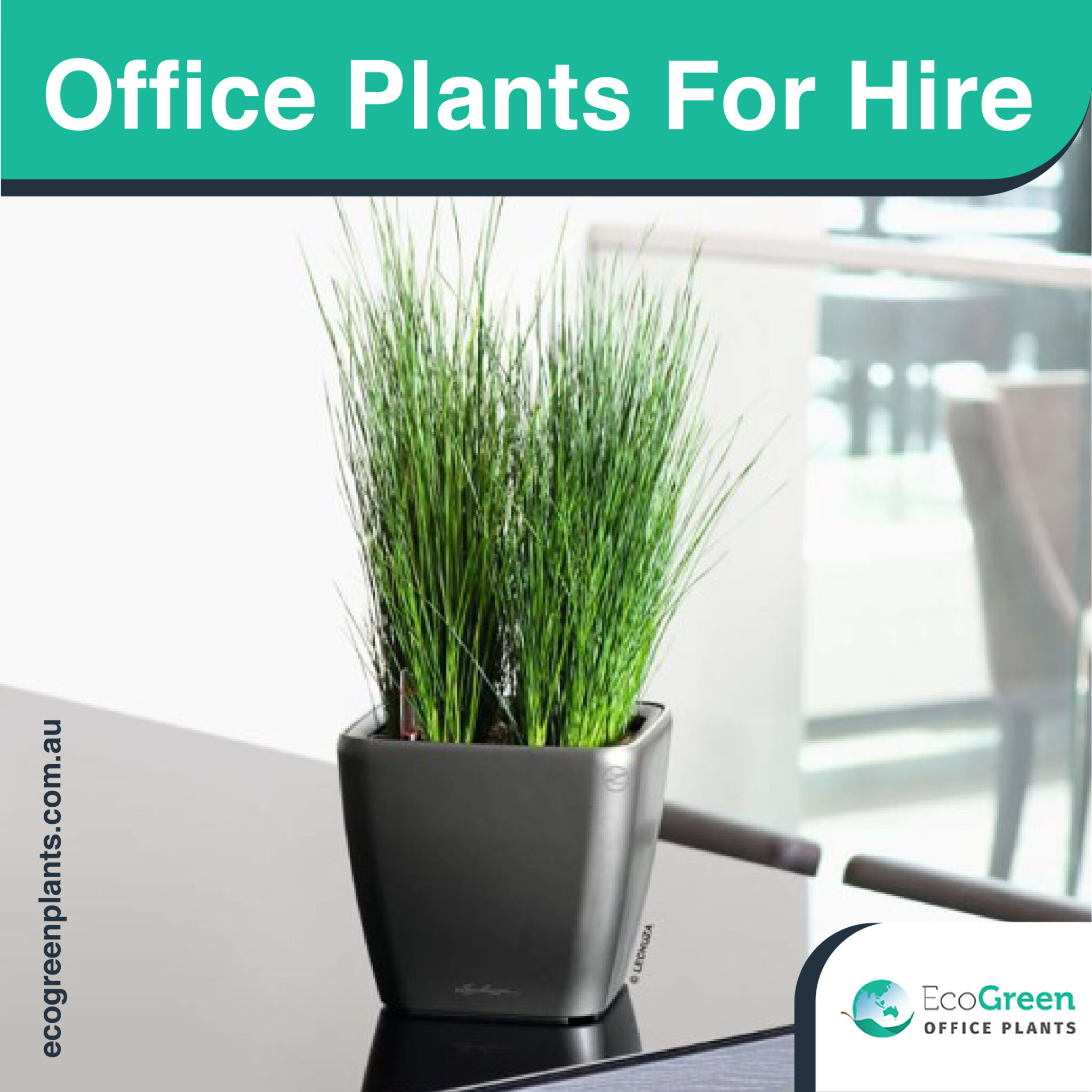 hire for events plant