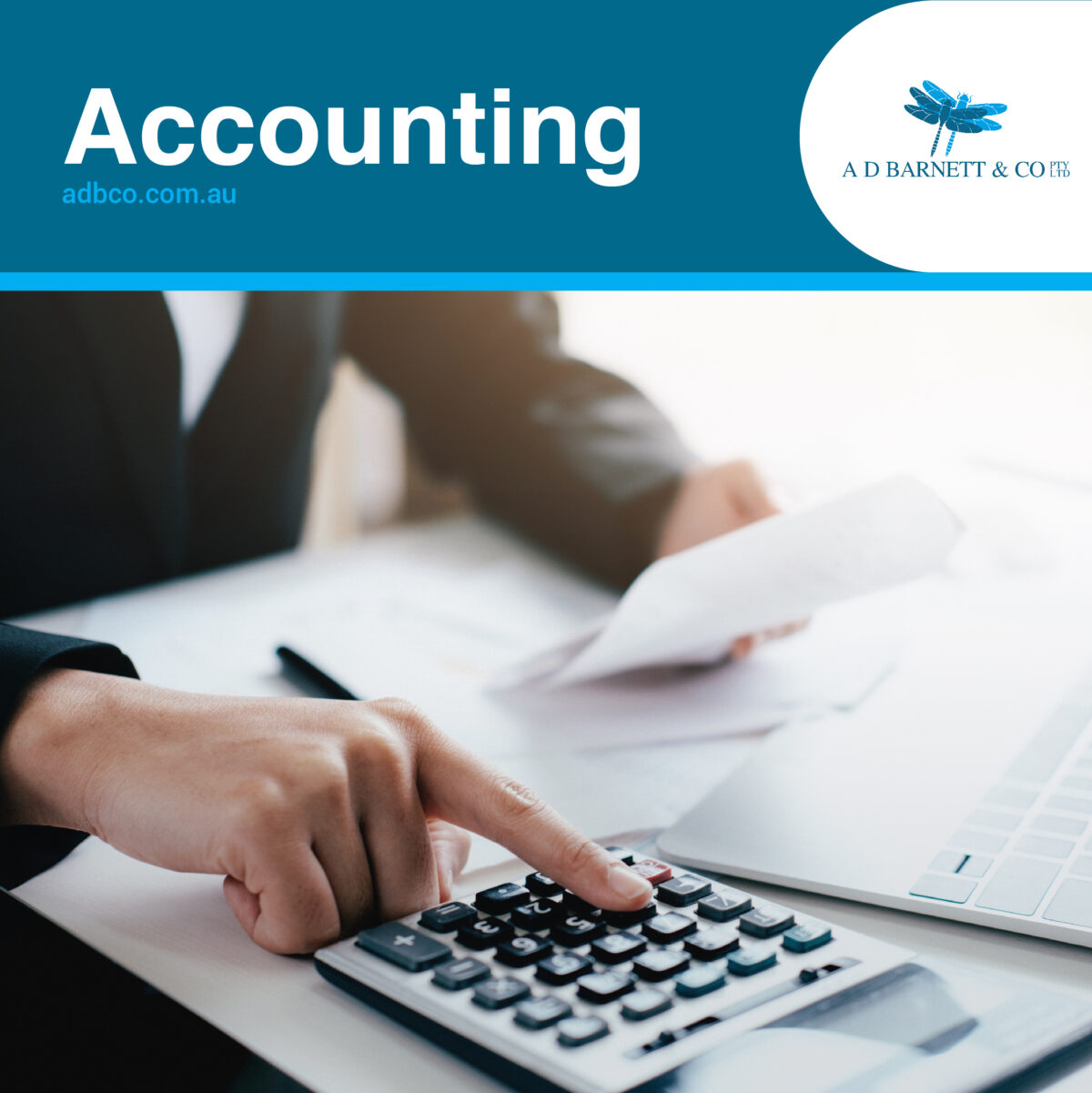 accountant toongabbie
