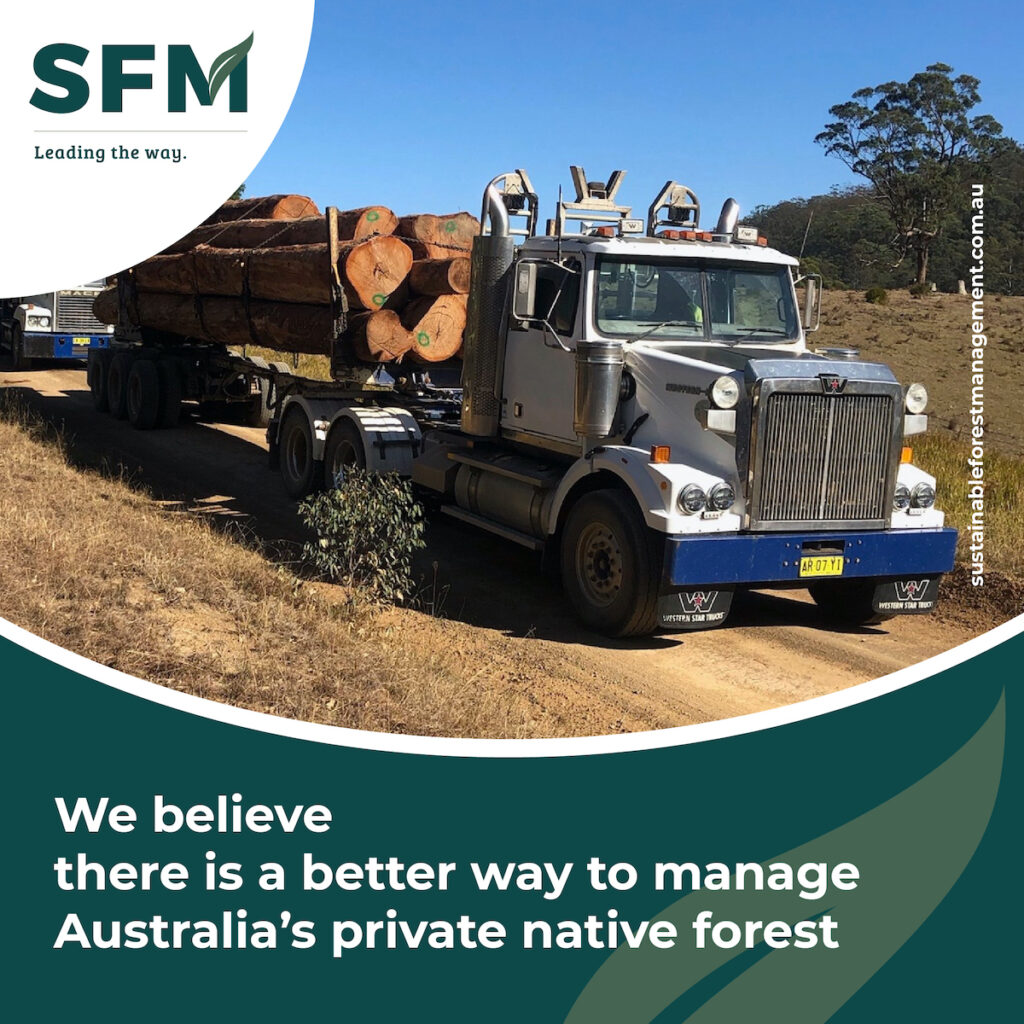 Sustainable Forest Logging Strategy