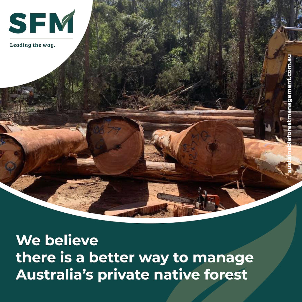 Logging Sustainable Forests