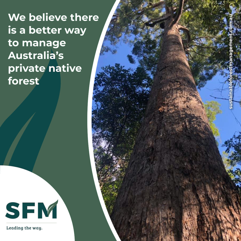 sustainable management and harvesting of forests