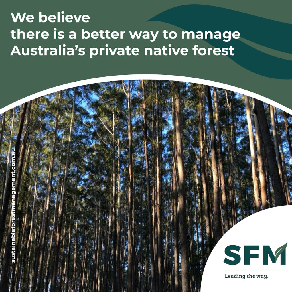 sustainable forest management approaches