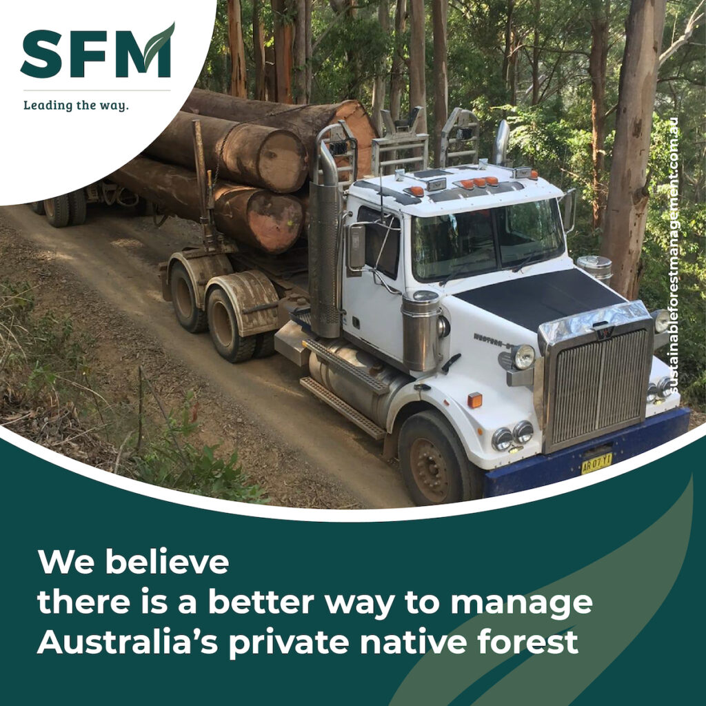 Sustainable Forest Logging