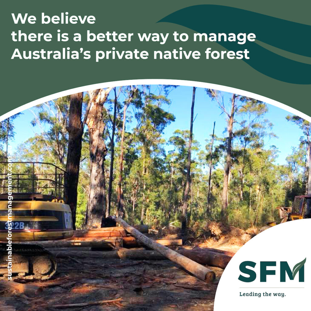 what is sustainable forest management