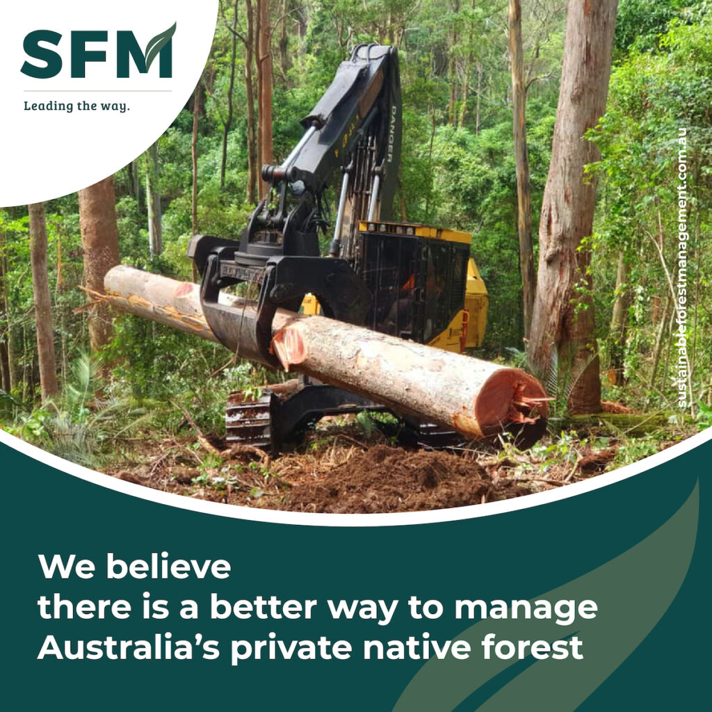principles of sustainable forest management