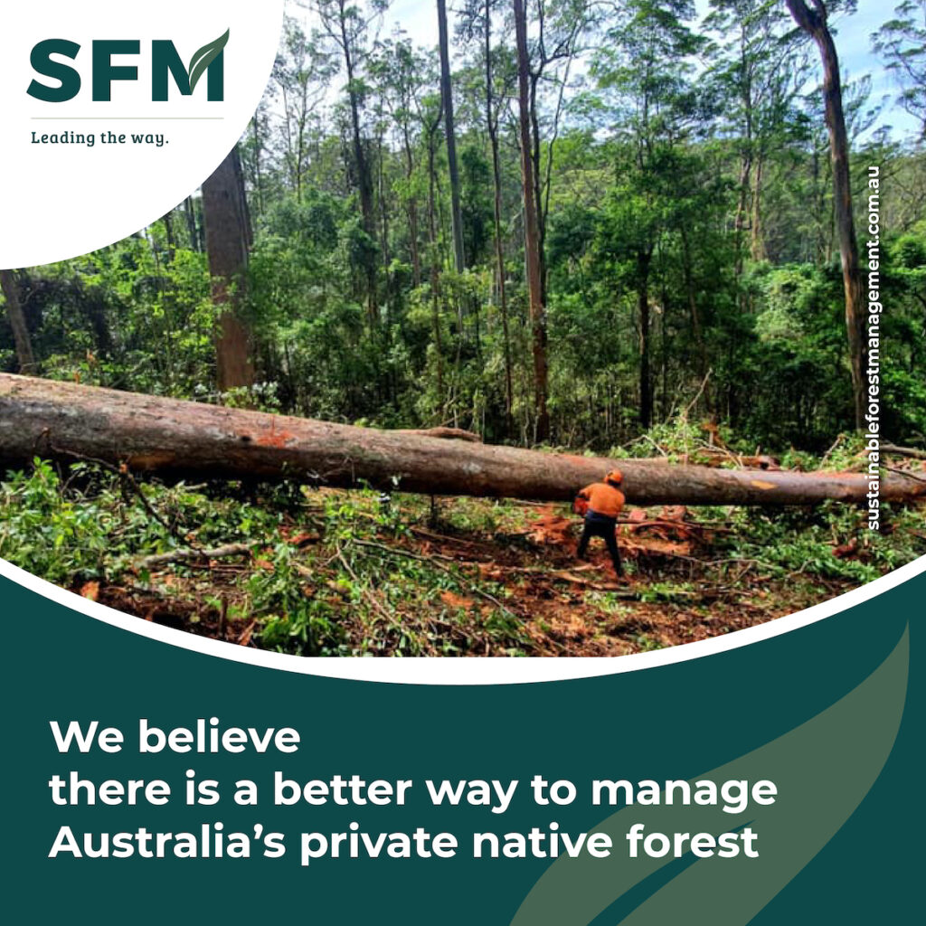 sustainable yield forest management