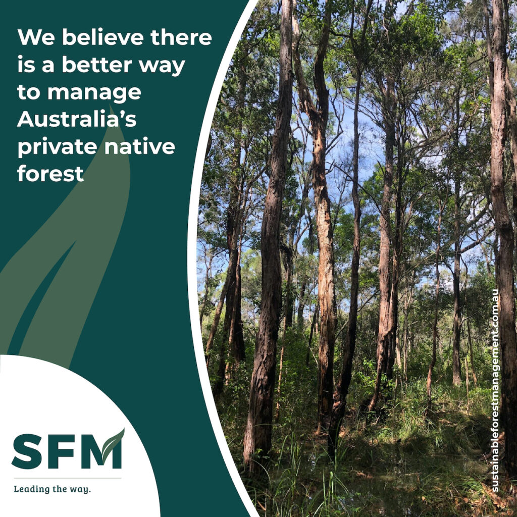 sustainable forest management plan
