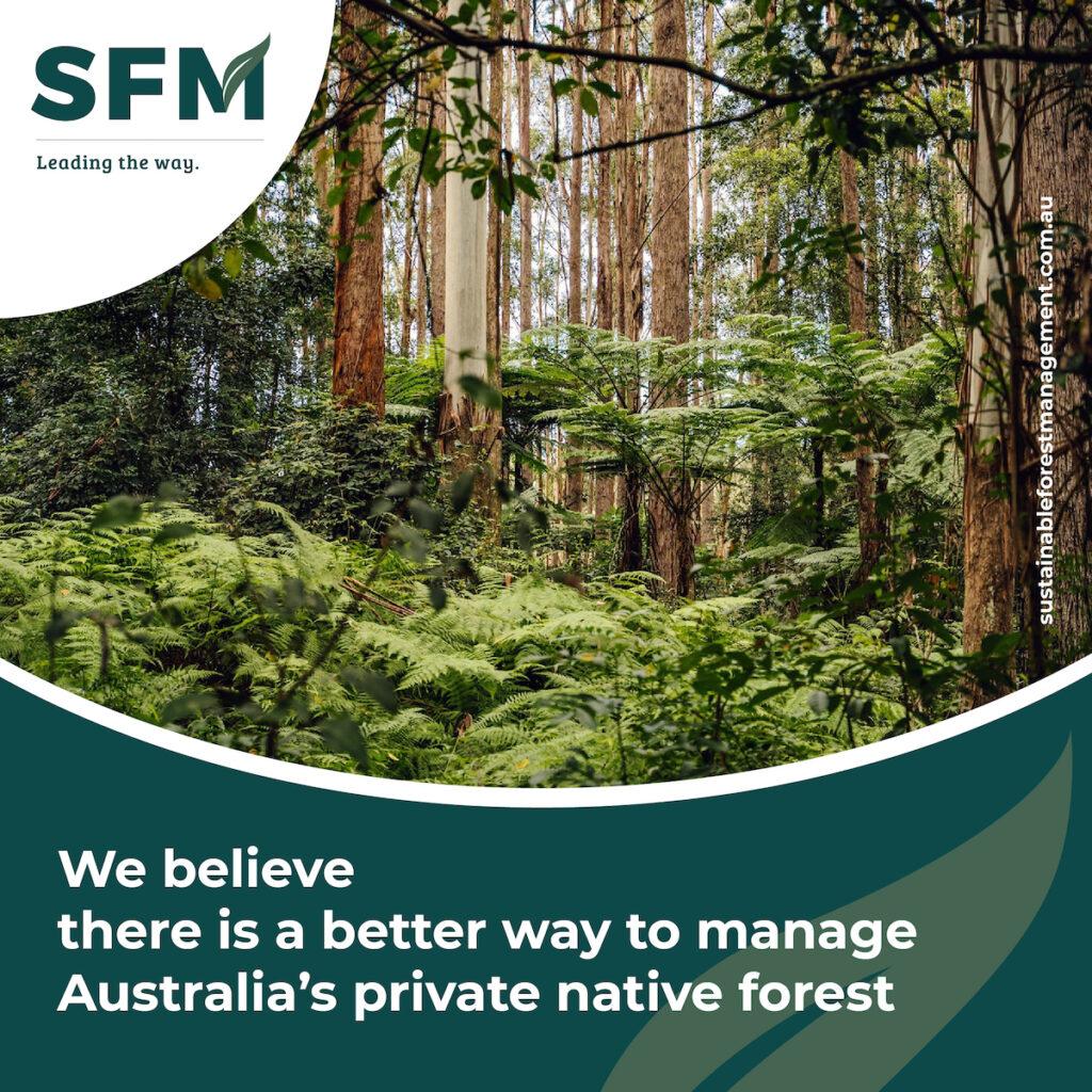 sustainable forest management australia