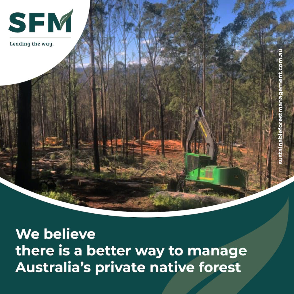 sustainable forest management strategy